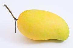 Mangoe dorato Immagini Stock