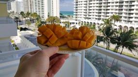 Mangoefterrätt Royaltyfri Foto