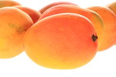 Mangoes Stock Photo