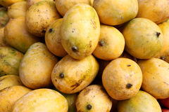 Mangoes. Original alphonso mangoes of India Royalty Free Stock Photos