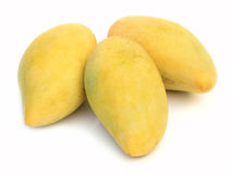 Mangoes. Isolated on a white background Stock Images