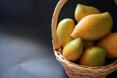 Mangoes. Fresh mango fruits in a basket royalty free stock photo