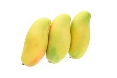 Mangoes. Three fresh mangoes standing on white background Royalty Free Stock Photography