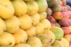mangoes Fotos de Stock Royalty Free