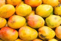 mangoes fotos de stock royalty free