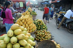 Mangoes all stacked up at busy market Stock Image