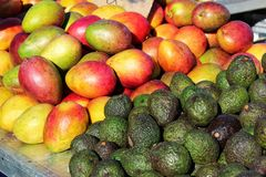 Mangoes and avocados at a market stall royalty free stock photography