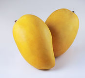 Mangoes. A closeup of two mangoes on white background Royalty Free Stock Image