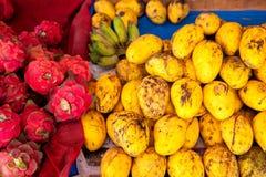 Mangoes and dragon fruits Stock Photos