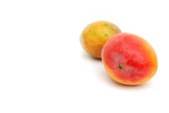 Mangoes fruits in space Royalty Free Stock Images