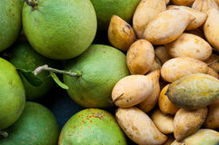 Mangoes and grapefruits Royalty Free Stock Photography
