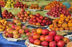 Mangoes in the market Royalty Free Stock Photo