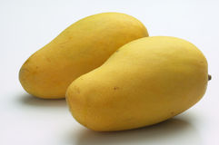 Mangoes. A pair of mangoes against white background Stock Photography