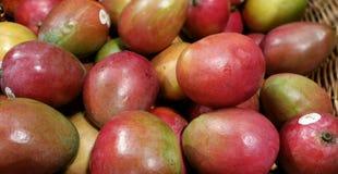 Mangoes Stock Photos