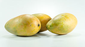 Ripe mangoes in white background royalty free stock images