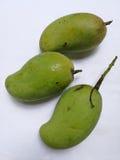 Mangoes. Three raw mangoes isolated on white background Royalty Free Stock Photography