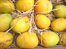 Mangofrüchte Lizenzfreie Stockbilder
