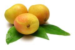 Mangofrüchte Stockfotos