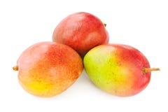 Mangofrüchte Lizenzfreies Stockbild
