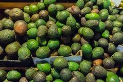 Mangofrüchte in den Pappschachteln Stockfotografie