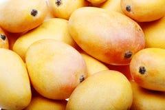 Mangofrucht. Lizenzfreie Stockfotos