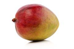 Mangofrucht Lizenzfreie Stockfotografie