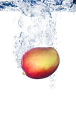 Mangofrucht im Wasser Stockbild