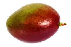 Mangofrucht lokalisiert Stockfotografie
