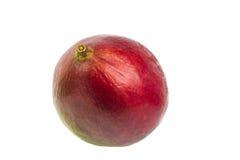 Mangofrucht lokalisiert auf weißem Hintergrund Stockfotos