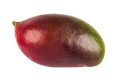 Mangofrucht lokalisiert auf weißem Hintergrund Stockfotografie