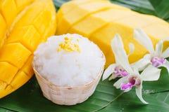 Mangofrucht mit klebrigem Reis Stockfotografie