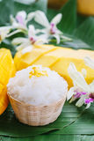 Mangofrucht mit klebrigem Reis Stockfoto