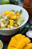 Mangofrucht-Salsa lizenzfreies stockbild