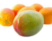 Mangofrucht und Orangen Stockfotos