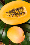 Mangofrucht und Papaya Lizenzfreies Stockbild