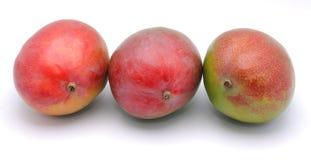 Mangofruchtfrüchte Lizenzfreies Stockbild