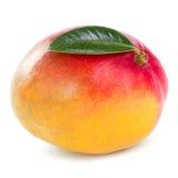 Mangofruchtfrucht Lizenzfreies Stockfoto