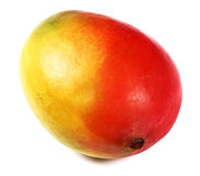 Mangofruchtfrucht getrennt Stockfotografie