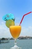 Mangofruchtsaft draußen Stockbilder