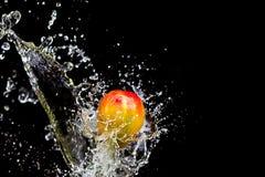 Mangofruchtspritzen über Wasser Stockbilder