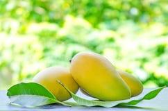 Mangofruit op de lijst Stock Foto's