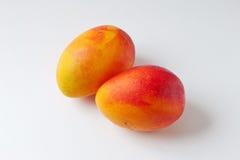 Mangofrukt Royaltyfri Fotografi