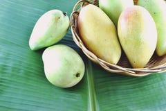 Mangofrukt i korg på bananbladet Royaltyfri Foto