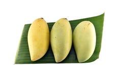 Mangofrukt med bananbladet som isoleras på vit bakgrund Arkivbild