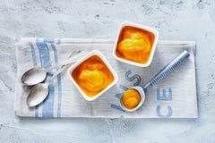 Mangoglass Royaltyfri Fotografi