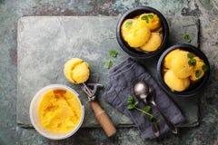 Mangoglasssorbet med mintkaramellsidor Royaltyfria Bilder