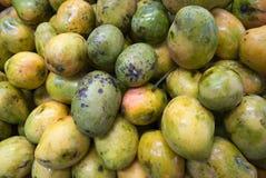 Mangohintergrund Lizenzfreie Stockfotografie