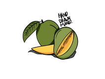Mangoillustration med hand dragen stil stock illustrationer