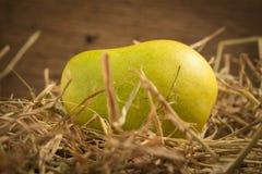 mangokleur Chartreuse Groen en geel naam yaikrom Aziatisch T royalty-vrije stock foto