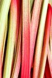 Mangoldgemüse Stockbild